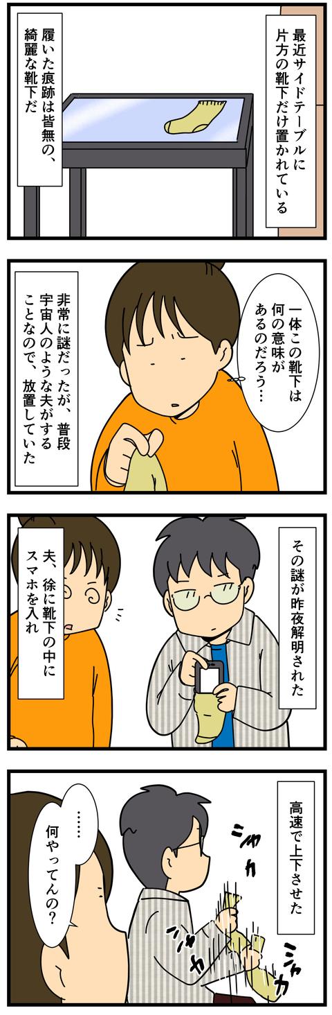 謎の靴下 (2)