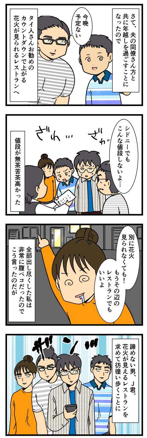 カウントダウン花火を求めて… (2)