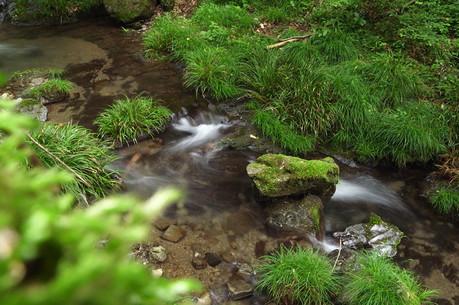 渓流を上から見下ろして