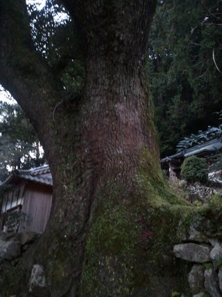 流谷八幡神社 12