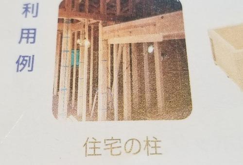 木材クイズ 1