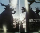 巨樹紹介ページ バオバブ