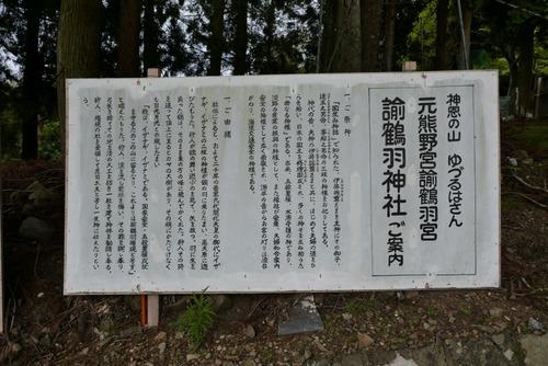 諭鶴羽神社の親子杉とアカガシ群落6