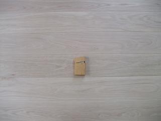 カスクオーク 150 P−2