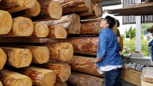 材木屋と行く森林ツアー2019-9