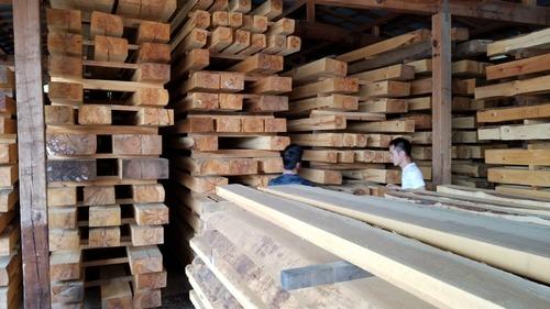 材木屋と行く森林ツアー2019-4