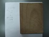 神代欅(ボグケヤキ)実験 2