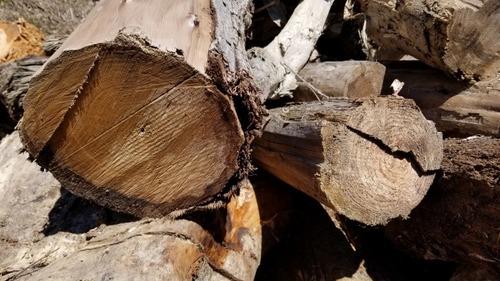 天然林材 1