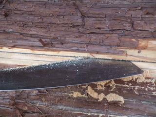 木挽き 5