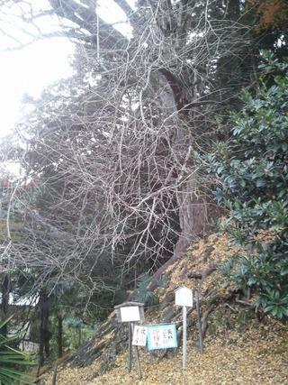 流谷八幡神社 3