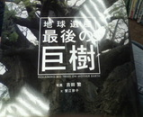 書籍 最後の巨樹