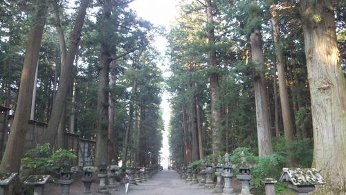 北口本宮さんの森 2