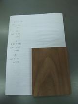神代欅(ボグケヤキ)実験 7