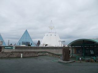 埋没林博物館1