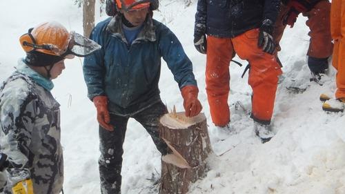 伐採実習12