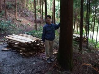 茨木産桧 1