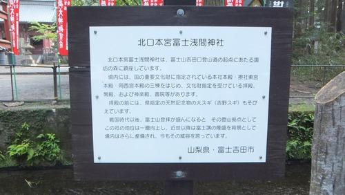 北口本宮さんの森 1