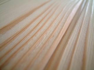 杉純白浮造り羽目板 11