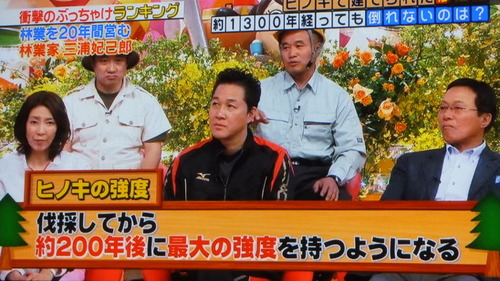 林業についてのテレビ放送 1