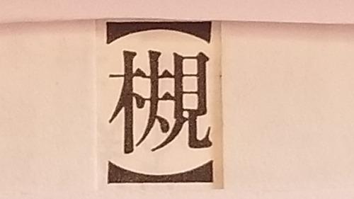 ケヤキ22