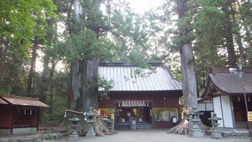 北口本宮さんの森 15