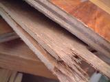 カリン単板貼り合板フローリング