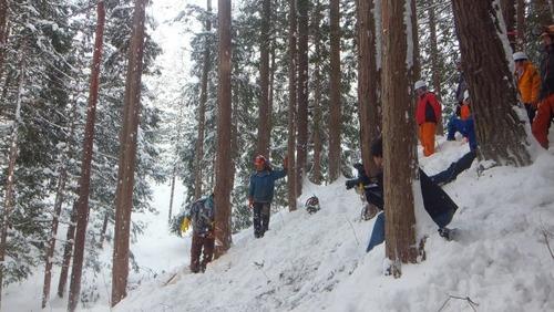伐採実習11