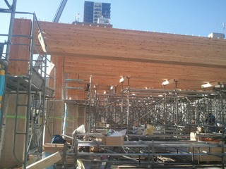 木材会館 11