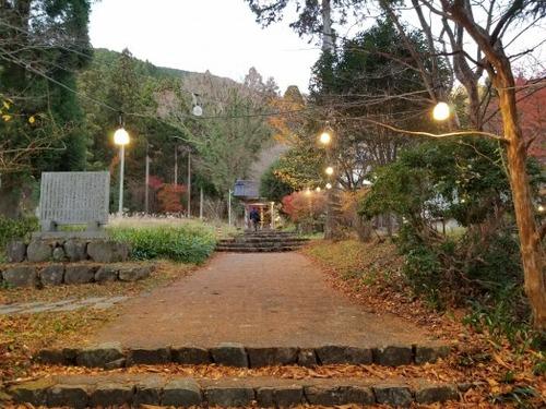 菩提寺のイチョウ 黄葉バージョン 1