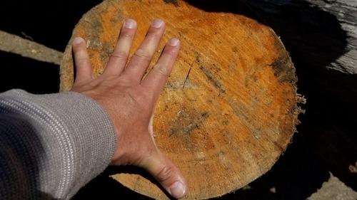 天然林材 2