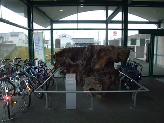 埋没林博物館4