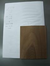 神代欅(ボグケヤキ)実験 6