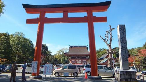 津島神社の大イチョウと奥の銀杏 2