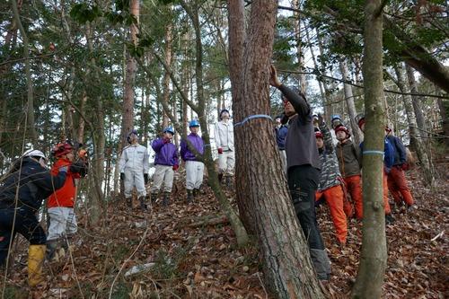戸田先生と愉快な仲間たちの伐採授業 2019年度 4