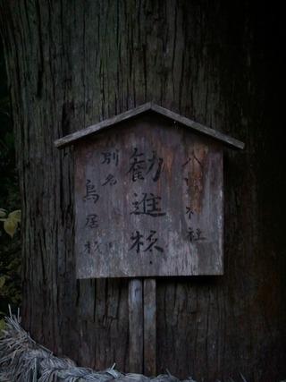 流谷八幡神社 18