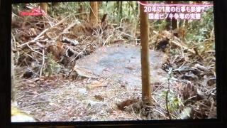 報道ニュース 3