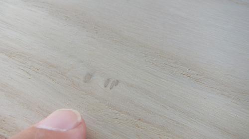 桐(キリ)幅広ムク一枚物フローリング9