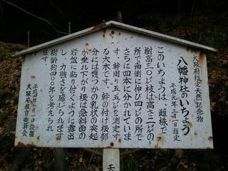 流谷八幡神社 1