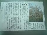 容保桜記事