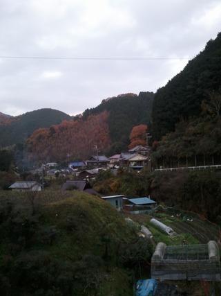 流谷八幡神社 14