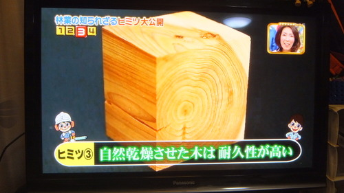 林業についてのテレビ放送 5