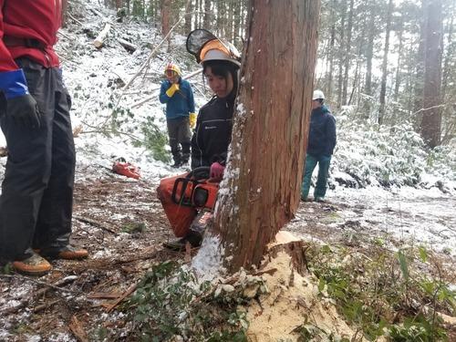 伐採授業7