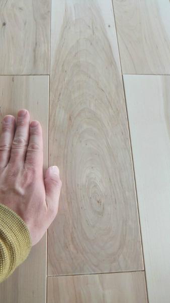 清涼樺(かば)幅広無垢一枚物フローリング 6