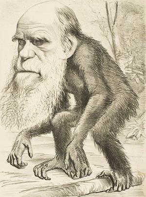 ダーウィン進化論