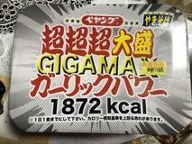 IMG_9230[1]