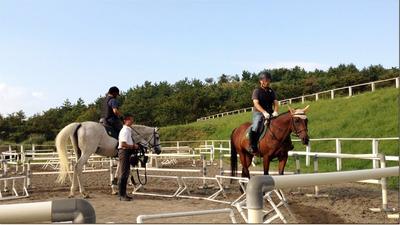 Horse2_R