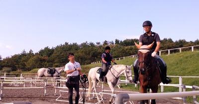 Horse1_R