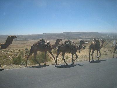 エチオピア・メケレ