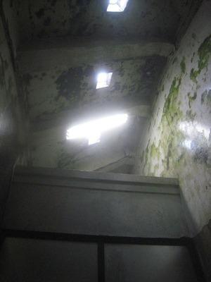 上の明かり036