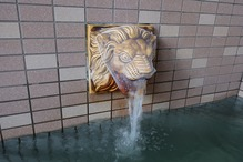 亀の甲温泉・ネットライオン